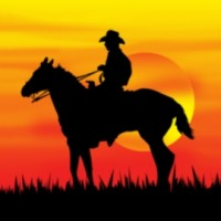 iStock_000000154468Small Sunset Cowboy Single 670x270 1